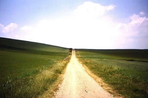 Novo caminho, paz e tranquilidade (Ilustração)